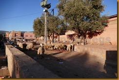 Marokko00404