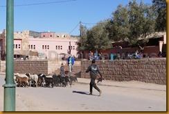 Marokko00417