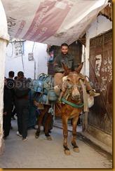 Marokko0095