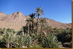Marokko01200