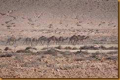 Marokko01551