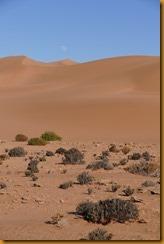 Marokko01588