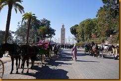 Marokko0747