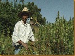 marokko_rif_farmers