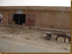 Mauretanien0104