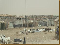 Mauretanien0118