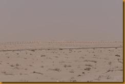 Mauretanien0125
