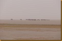 Mauretanien0137