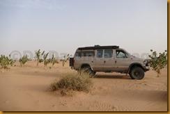 Mauretanien0150