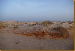 Mauretanien0166