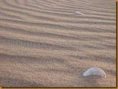Mauretanien0167