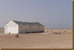 Mauretanien0236