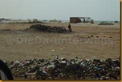 Mauretanien0292 - Kopie