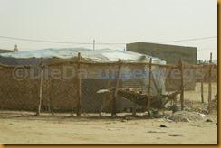 Mauretanien0293 - Kopie