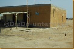 Mauretanien0296 - Kopie