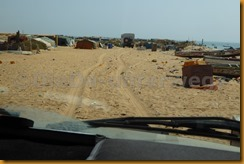 Mauretanien0308 - Kopie