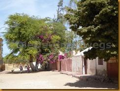 Senegal0250