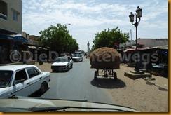 Senegal0723