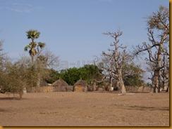 Senegal0799