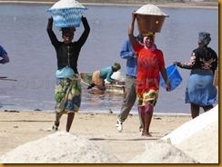 Senegal0972