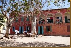 Senegal1299