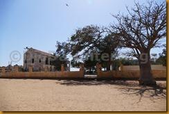 Senegal1303