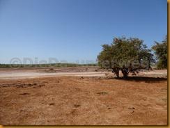 Senegal1407