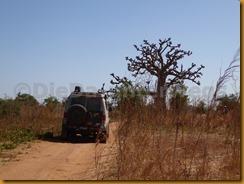 Senegal1413