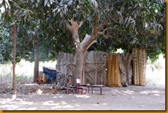 Gambia0637
