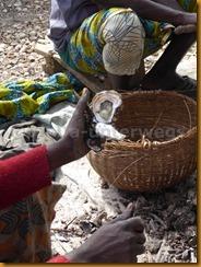 Senegal2000