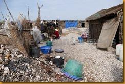 Senegal2006