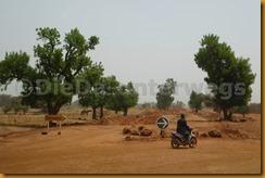 Senegal2257