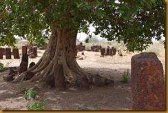 Senegal2332