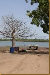 Guinea Bissau0164