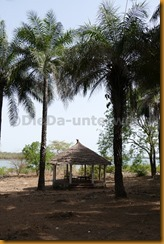 Guinea Bissau0178