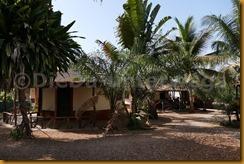 Guinea Bissau0369