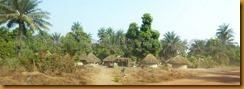 Guinea Bissau0585