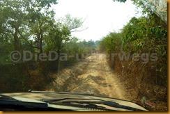 Guinea Bissau0587