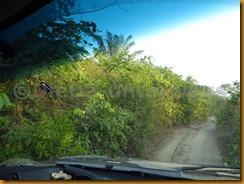 Guinea Bissau0601