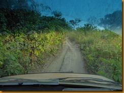 Guinea Bissau0602