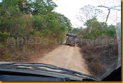 Guinea Bissau0608