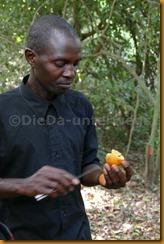 Guinea Bissau0633