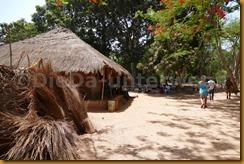 Guinea Bissau0720