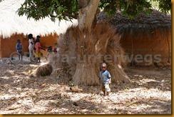 Guinea Bissau0728
