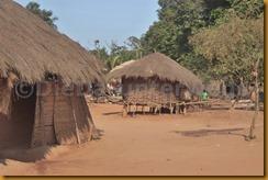 Guinea Bissau0749