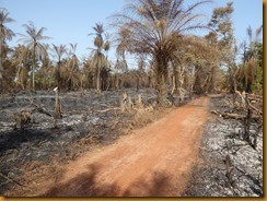 Guinea Bissau0755