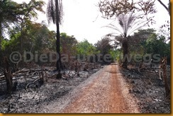 Guinea Bissau0777