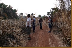 Guinea Bissau0838