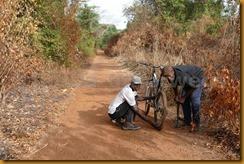 Guinea Bissau0869