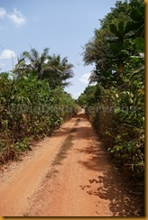 Guinea Bissau0934
